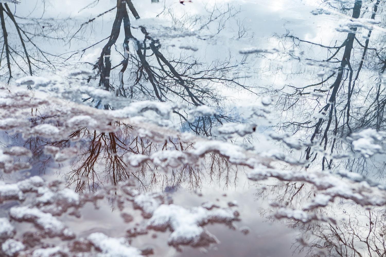 Canon 6D, 50mm, 1-400, f4, iso200(Emerson NJ)겨울 속 두 마음.jpg