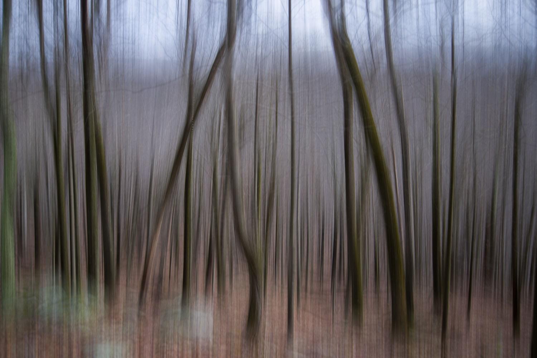 _I4A0397-blur.jpg